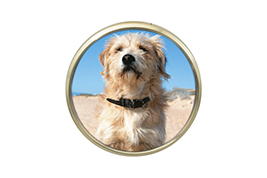 Circular Picture Frame Image