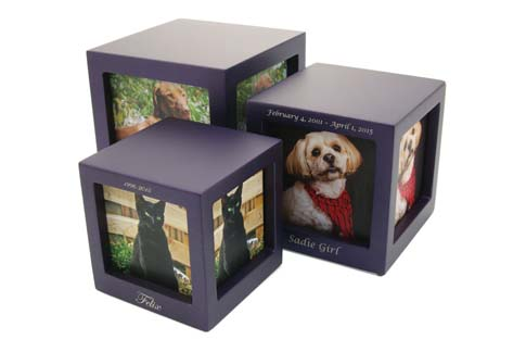 Photo Cubes - Violet Image